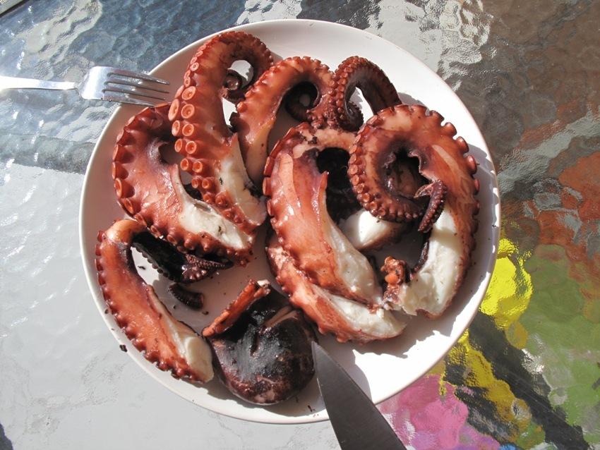 экскурсия на Кипре ловля осьминогов
