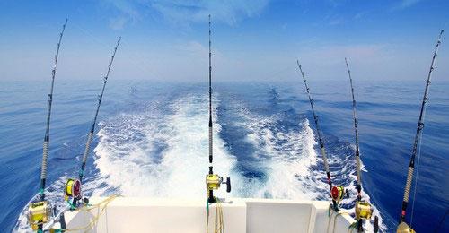 морская рыбалка в Айя Напе