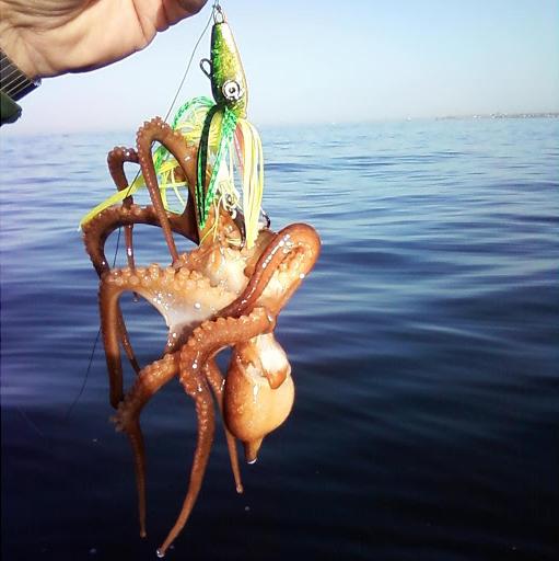 снасть для ловли осьминогов на Кипре