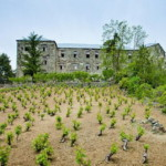 Беренгария – заброшенный отель с привидениями