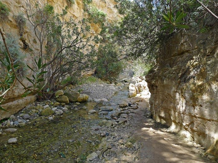 экскурсии в ущелье Авакас