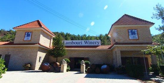 экскурсии в винодельню Ламбури
