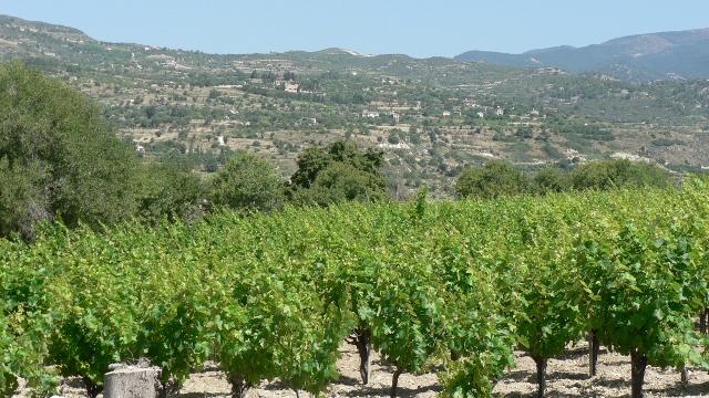 экскурсии в деревню Монагри Кипр