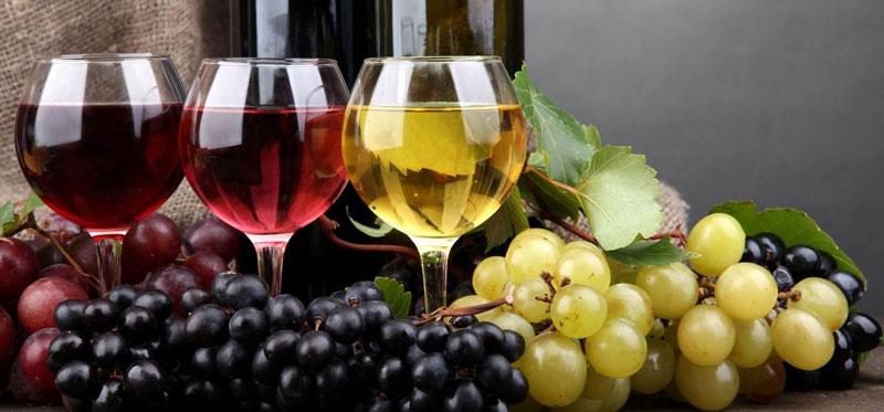 Какое покупать вино на Кипре