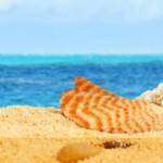 Чем заняться и что посмотреть на Кипре? 10 лучших идей