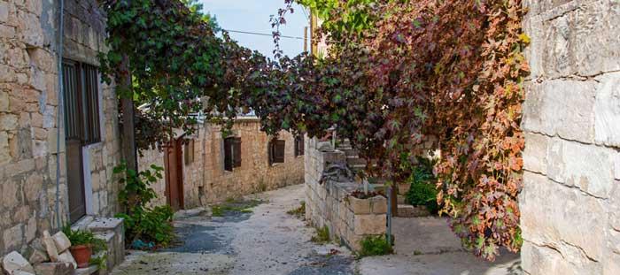 индивидуальные экскурсии в  деревню Фити Кипр