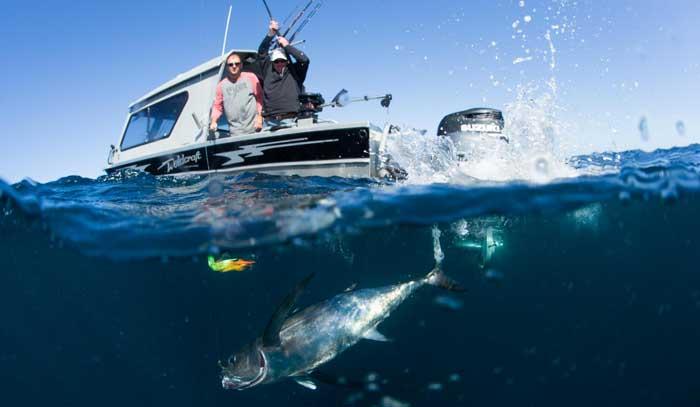 Кипр рыбалка на тунца