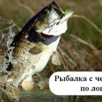 Трофейная рыбалка на басса на Кипре + обзорная экскурсия! По цене экскурсии