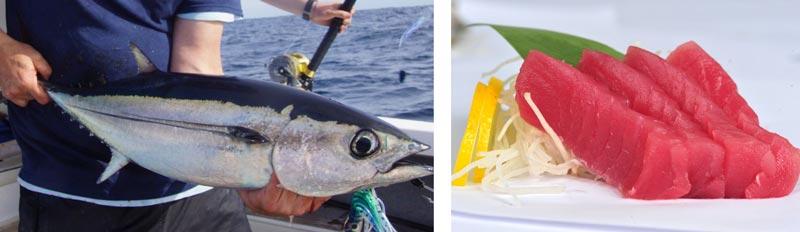 ловля тунца Кипр