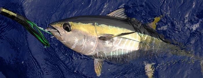 рыбалка в Протарасе