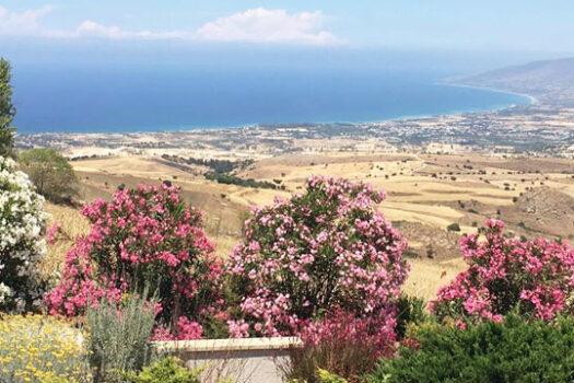 Кипр Друша